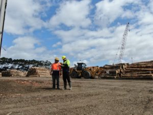 NZ Timber Industry Booming